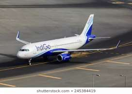 Indigo airlines flight for ground