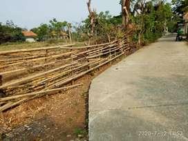Dijual Murah Tanah Darat 2000m²(SHM) di Rajeg Tangerang