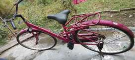 Ladies cycle Nice condition