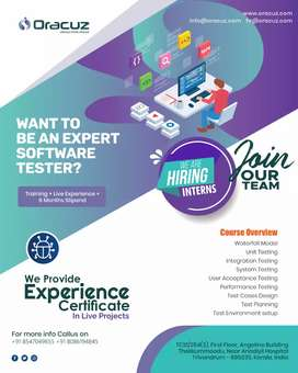 Manual Testing Internship