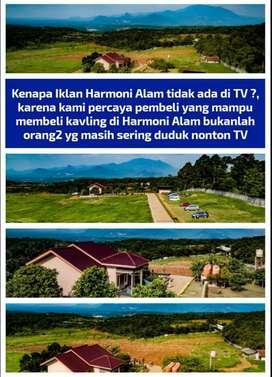 dijual tanah murah bonus pohon durian cm 480rb/ M²