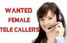 WANTED TAMILTELECALLERS FEMALE ONLY..