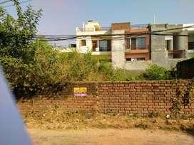 new chandigarh(mullanpur) 100gaj plot