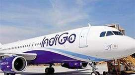 COMPUTER OPERATOR REQUIREMENT INDIGO AIRLINES APPLY FAST.