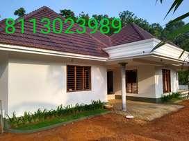 BEAUTIFUL BRAND NEW HOUSE SALE IN PALA KOTTAYAM ROAD PULIYANNUR