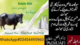 100% Pure Buffalo Milk Home Delivery All Over the City Chiniot
