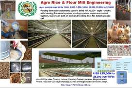 Layer Poultry Farm Control Shed.