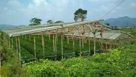 Tanah subur pertanian untuk sayuran / kembang