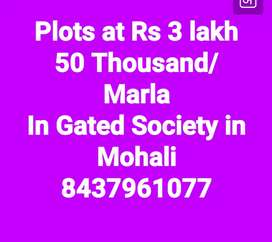 Plots in Gated Society at Rs 3 lakh 50 thousand per Marla in Mohali