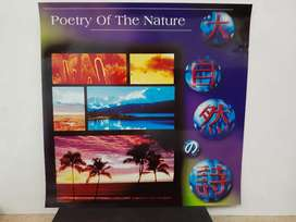 Poetry Of The Nature