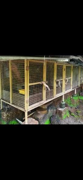 Enclosure for livestock & other