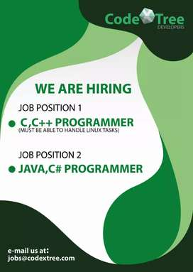 c and c++ programmer