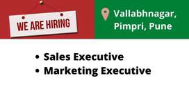 Hiring Female Online Sales Executive(work from home)