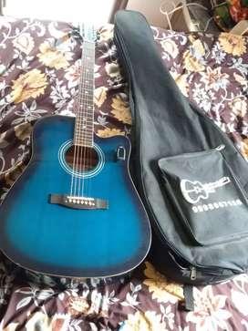 Trinity Acoustic guitar TNYHighway-41