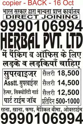 Hpl company me urgently hiring for assistant manager