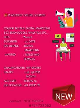 Wanted digital marketing expert fresher & final year student