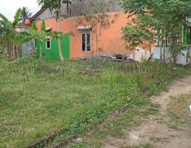 Tanah Murah Siap Bangun di Pandansari Ajibarang