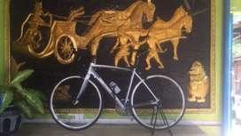 Roadbike helious c2