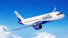 Full of Vacancies for male or female in indigo airlines