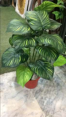 Artificial plant/money /rubber plant 25 inches height with 18 leave