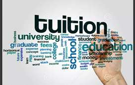 Home Tution /Tution/online classes