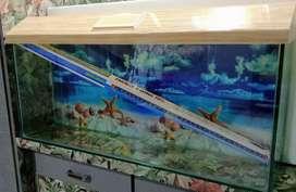 3 Feet New Aquarium With 8mm Glass