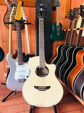 Gitar Akustik Apx500 Natural Double Run