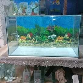 Aquarium murah meriah
