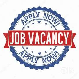 Urgent hiring for food company full time and part time job fresher.
