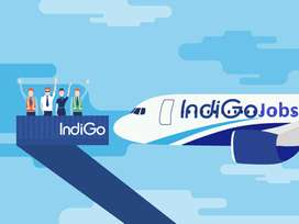 Airport Hirirng- Ground Staff- IndiGo Airlines URGENT HIRING Apply now