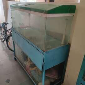 Old aquarium set with stand