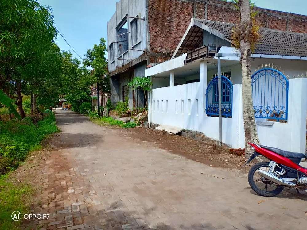 tanah bagus dekat kampus undip tembalang jalan bulusantembalang