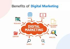Website & digital marketing for business