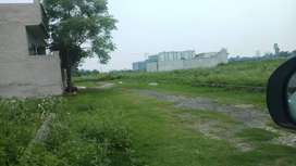 7.25 marla  plot in just 12 lac jalandhar heights flats  66 ft road