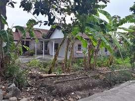 Rumah dikontrakan Berbah / rumah disewakan Berbah