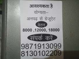 job fair in gr noida best opportunity required only serious manpower