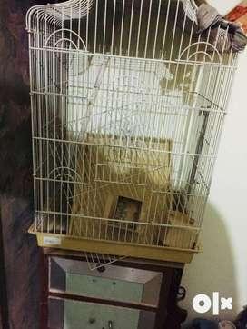 Bird solid cage