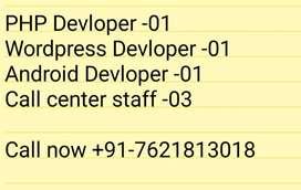 Php devloper / wordpress developer/Android devloper