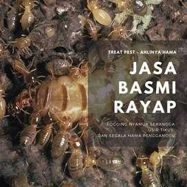 jasa basmi hama rayap tikus fogging serangga nyamuk kecoa