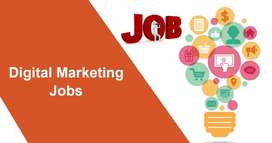 Hiring For Digital Marketing-Trainers &Team( Expe Must)