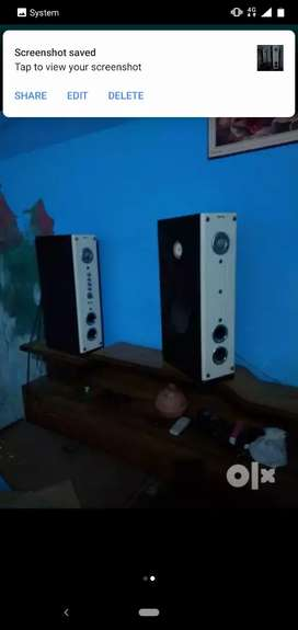 Zabronic Speakers