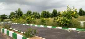 warangal highway