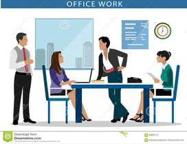 Back Office I Backend | Data Entry | non Voice | Domestic BPO