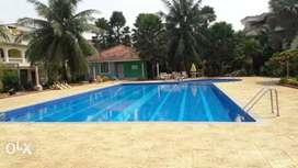 Studio appt in benaulim near Maria hall benaulim with swimming pool