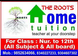 The roots home tuition