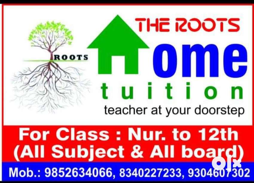 The roots home tuition 0