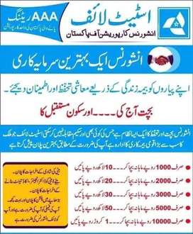 State life insurance policy