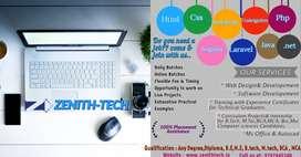 web development & software