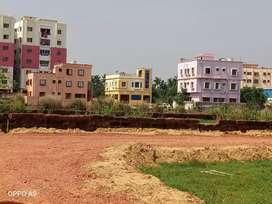 Individual stitiban plots ready for immediate housing