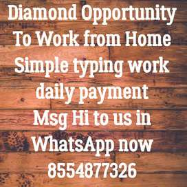 Get paid daily for simple typing work
